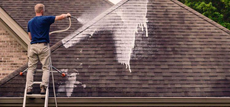 Tout savoir sur le traitement antimousses de toiture